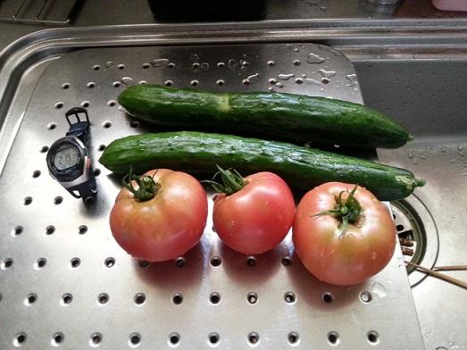 2014 家庭菜園収穫 1.jpg